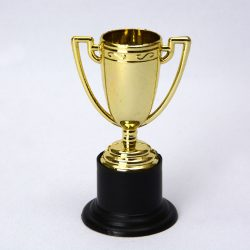 Mini-Pokal